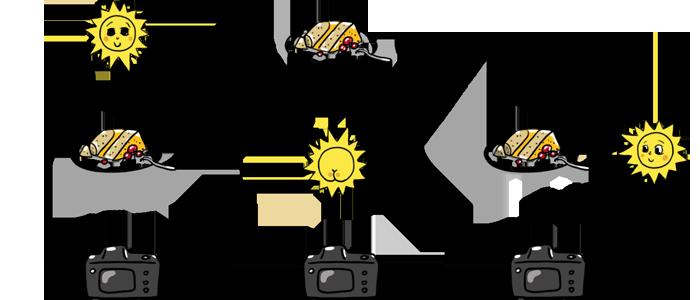 Основы фуд фотографии, как правильно фотографировать еду, фуд фотография, фотография еды