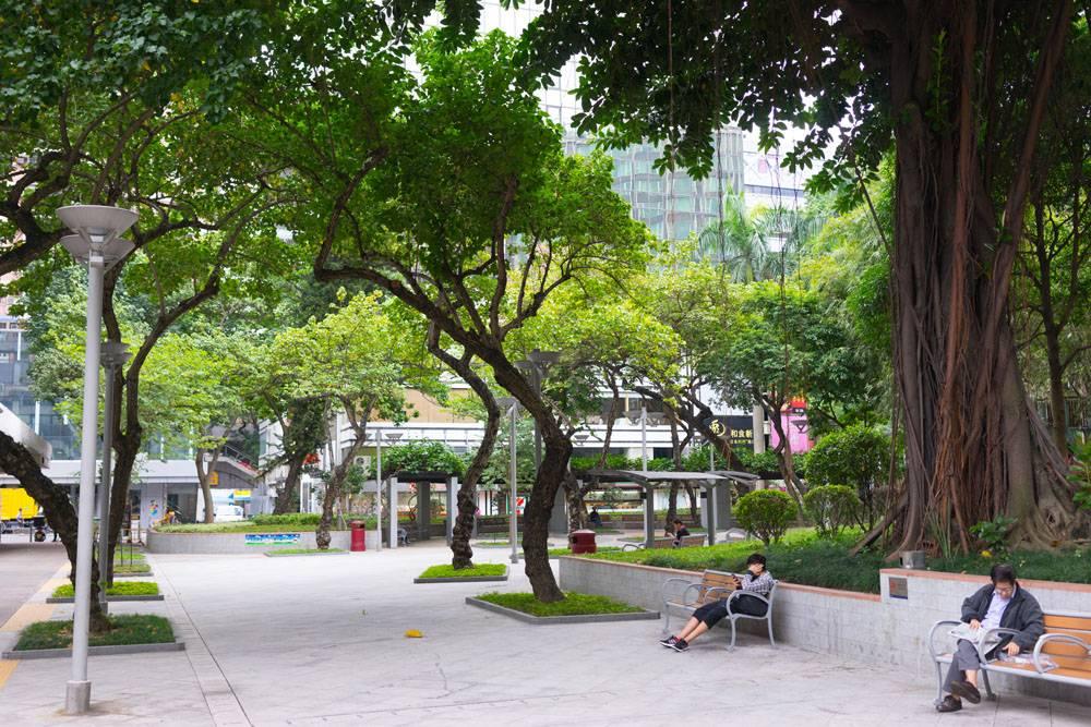 Отель Kowloon Shangri-La в Гонконге, обзор и впечатления